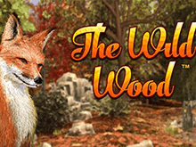 Игровой аппарат The Wild Wood
