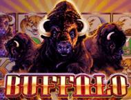 Игровой автомат Buffalo